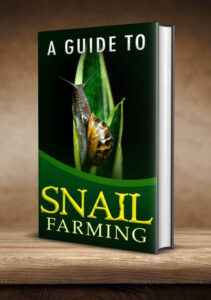 A Guide To Snail Farming Ebook Cover2